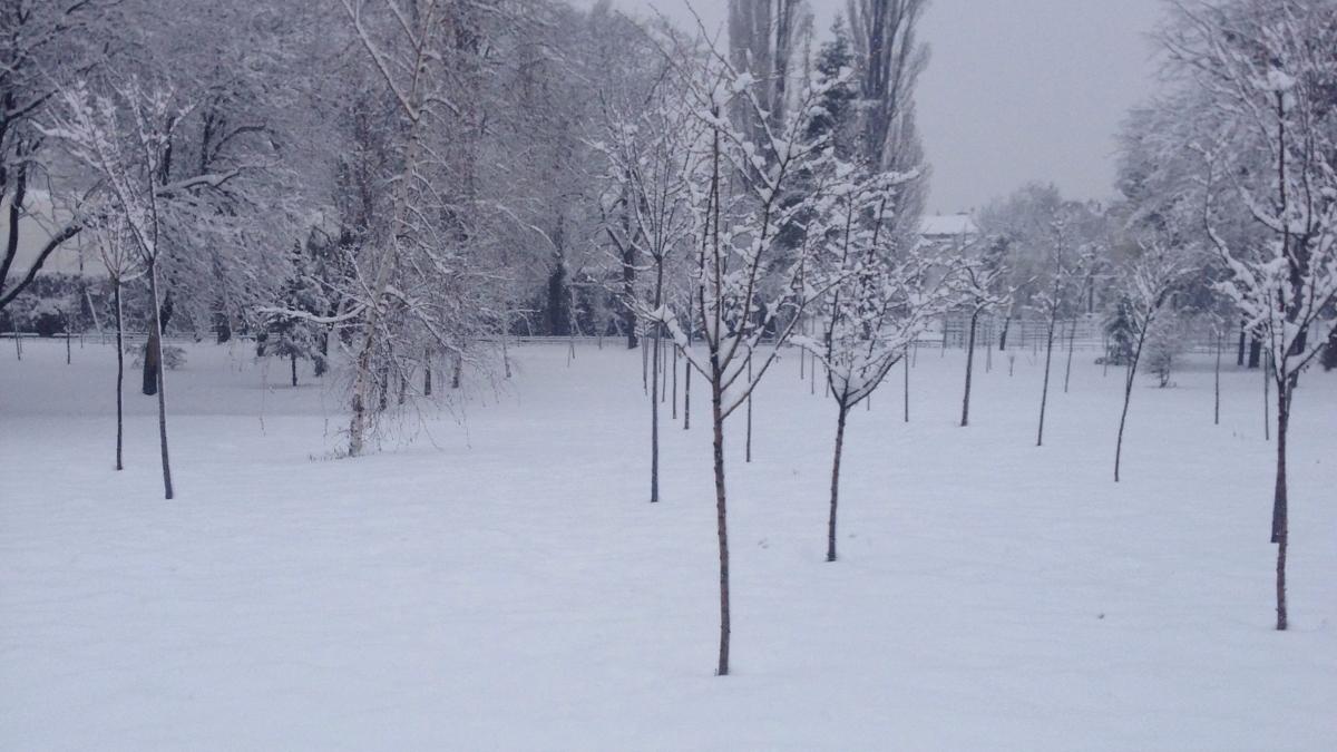 Zăpada în luna lui martie